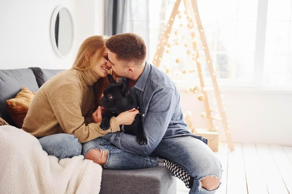glückliches liebendes Paar, das auf der Couch küsst