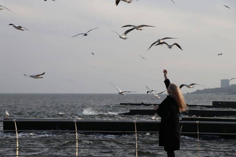 Das Mädchen am Wasser streckt den Tauben die Hand entgegen