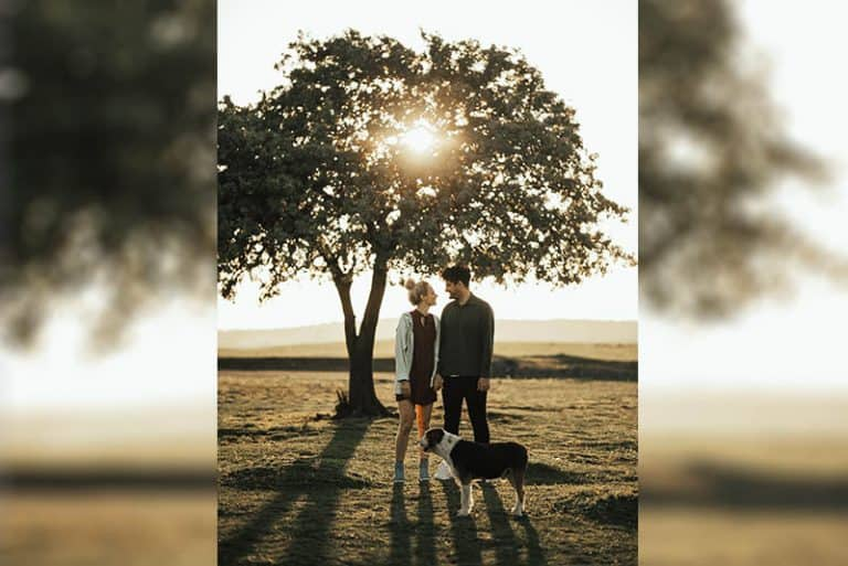 Wie Du Ihn Dazu Bringen Kannst, Sich In Dich Zu Verlieben, Basierend Auf Seinem Sternzeichen
