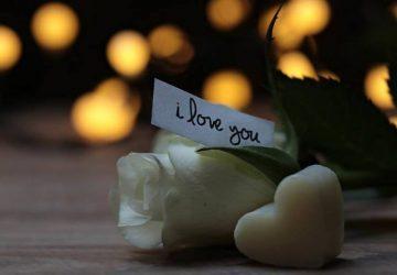 Rosen mit einer Liebesbotschaft