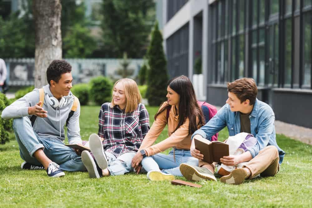 Eine Gruppe von Studenten sitzt im Gras und redet