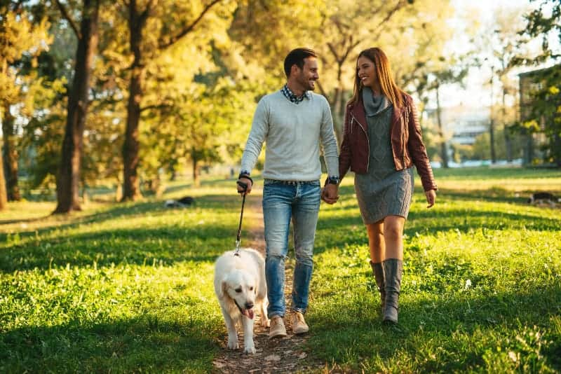 Ein lächelndes Paar geht mit einem Hund durch den Park