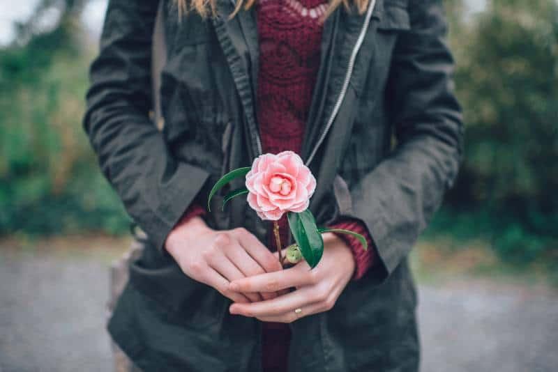 Frau, die rosa Rose hält, die nahe Bäume während des Tages steht