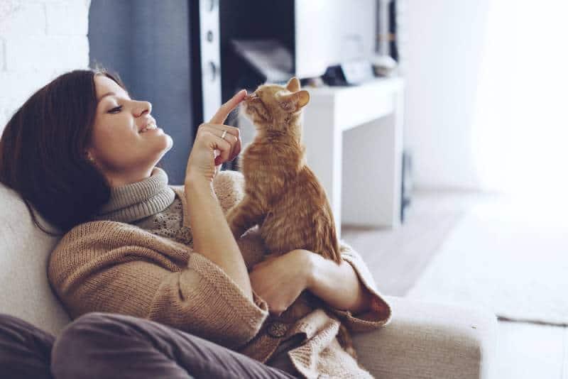 Frau spielt mit Katze zu Hause