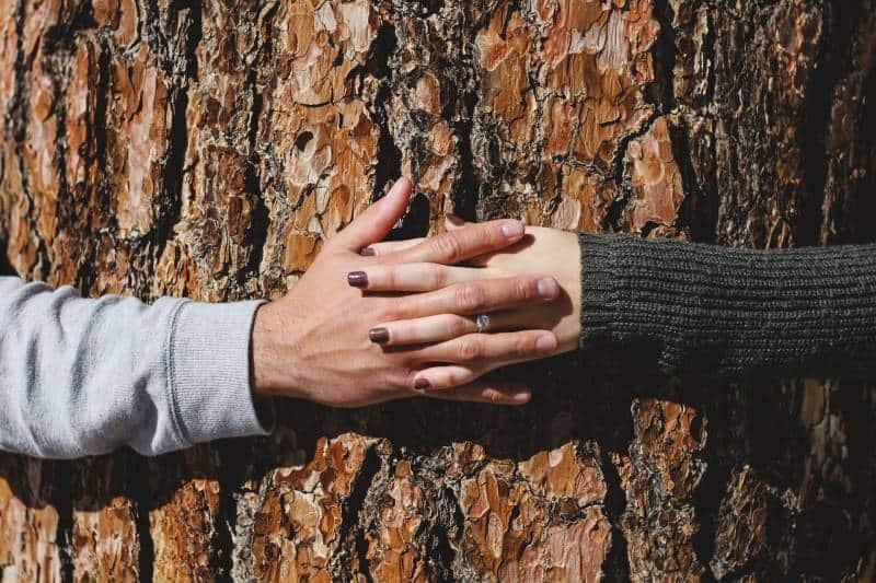 Mann und Frau Hand verbinden auf Baumstamm