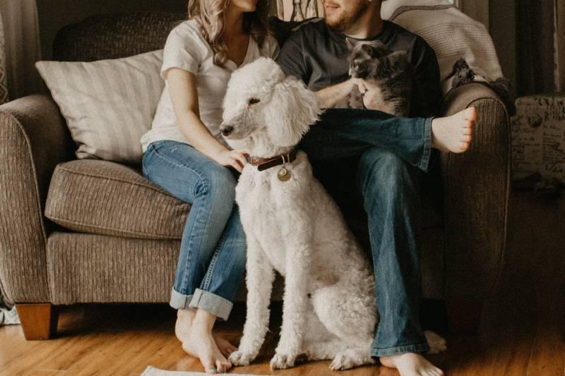 Paar sitzt auf dem Sofa neben dem Hund im Zimmer