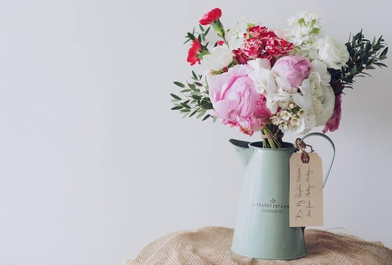 weiße und rosa blühende Pflanze