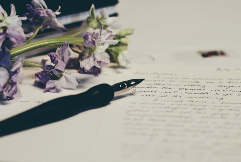 lila Blumen auf Papier