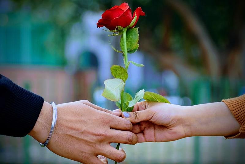 Ein Mann und eine Frau halten eine rote Rose, während sie im Freien stehen