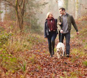 Ein Mann und eine Frau kämpfen im Wald mit einem Hund