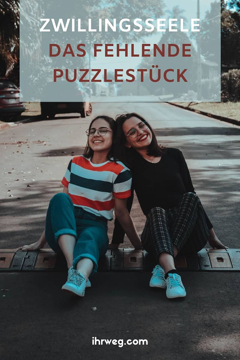Zwillingsseele - Das Fehlende Puzzlestück