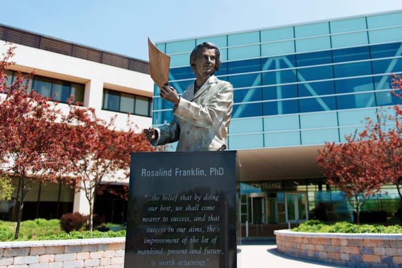 eine Statue von Rosalind Franklin am Eingang der Universität