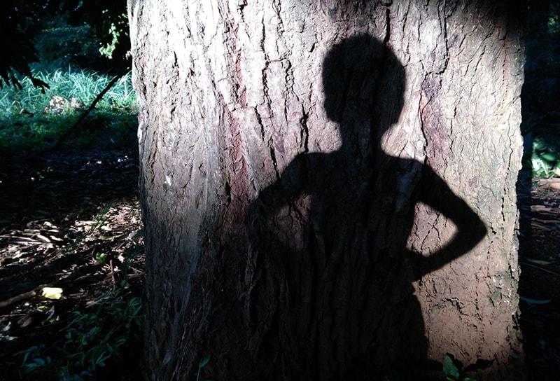 ein Schatten eines kleinen Jungen auf dem Baum