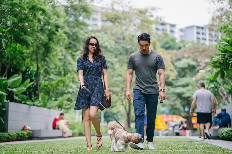 eine Frau und ein Mann gehen mit einem Hund in den Park