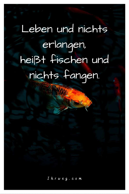 Tauche Mit Diesen 150 Fische-sprüche In Die Wasserwelt Ein!