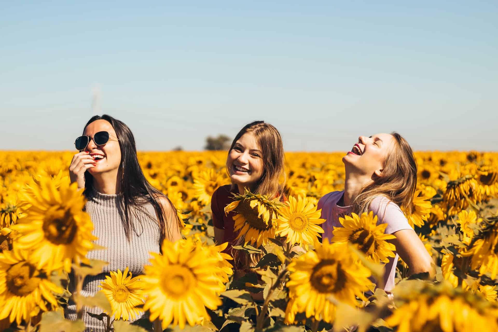Freunde, die in einem Sonnenblumenfeld lachen