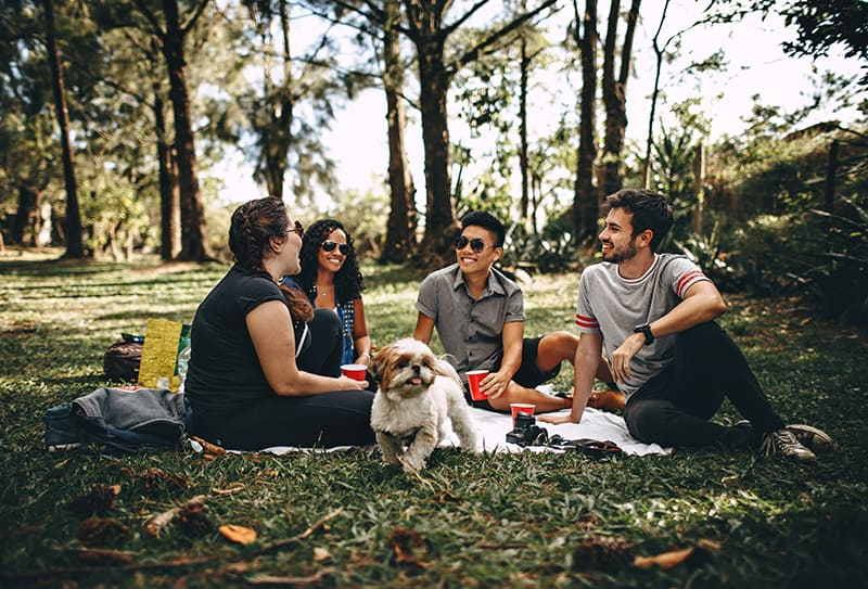 Gruppe von Freunden, die auf der weißen Matte im Gras sitzen und lachen