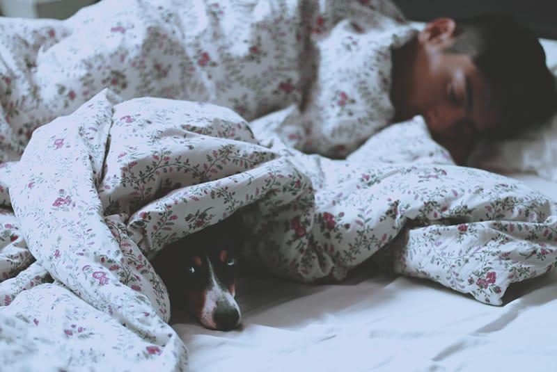 Mann, der in einem Bett neben einem Hund schläft, der sich unter dem Laken versteckt