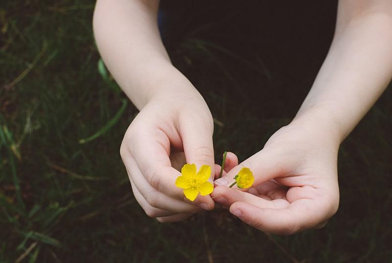 eine Person, die gelbe Blumen unter dem grünen Gras hält