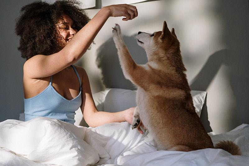 eine Frau, die mit einem Hund spielt, während sie im Bett sitzt