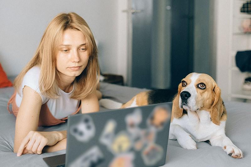 eine nachdenkliche Frau, die neben dem Hund auf dem Bett liegt und auf den Laptop schaut