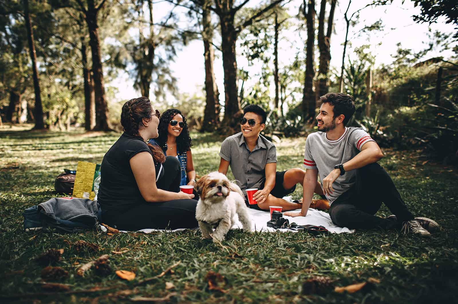 fröhlicher Freund, der ein Picknick während des doppelten Dates hat