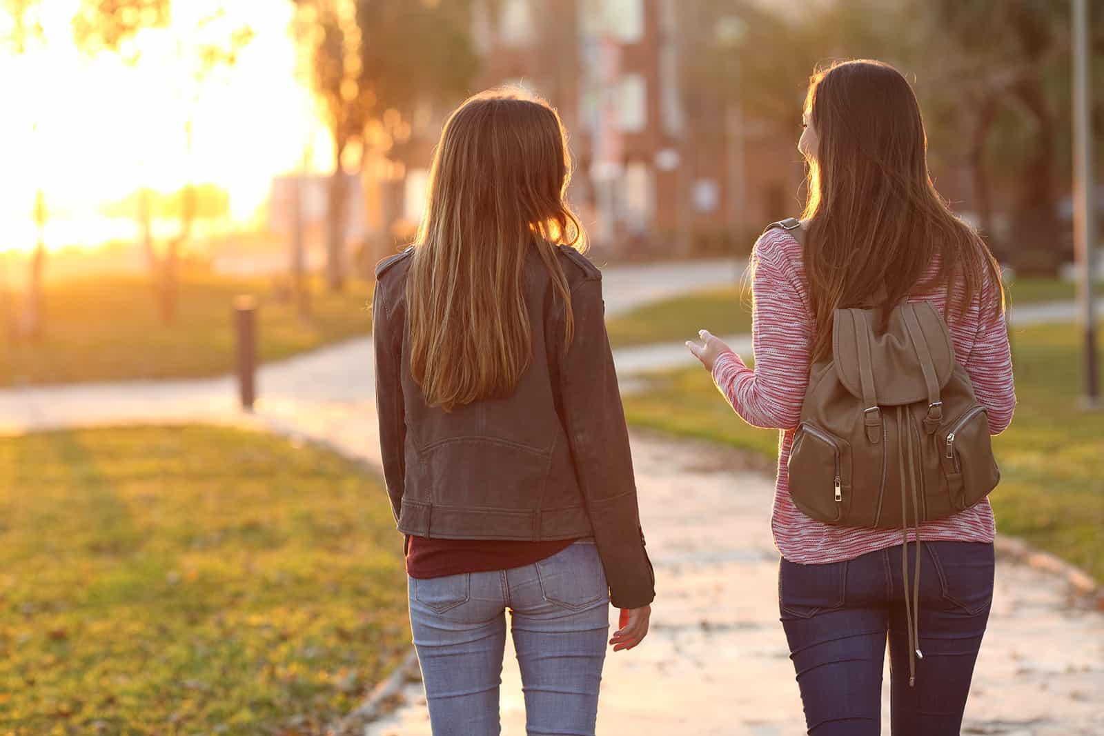 zwei Freunde gehen zusammen in einen Park und unterhalten sich