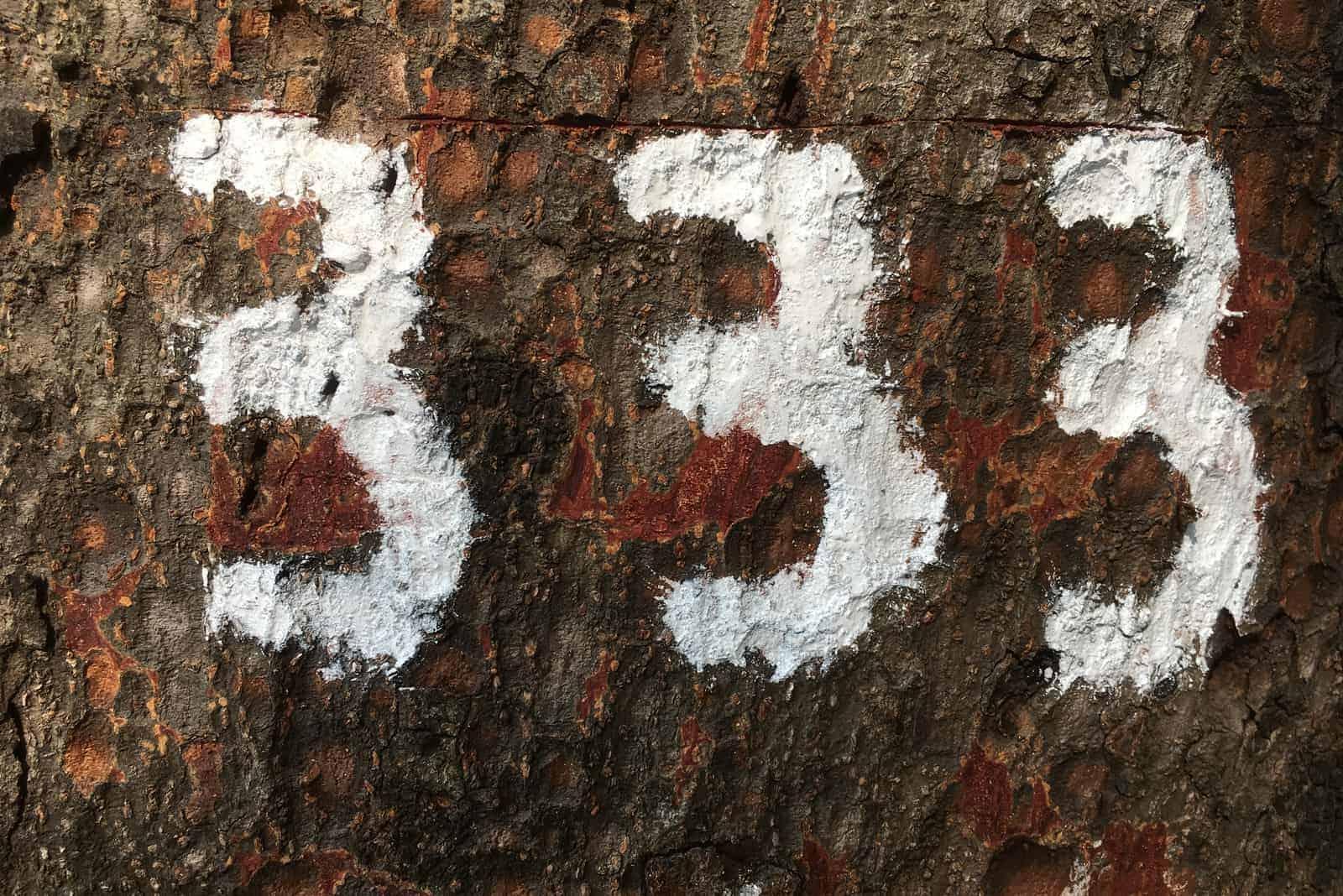 engelnummer 333