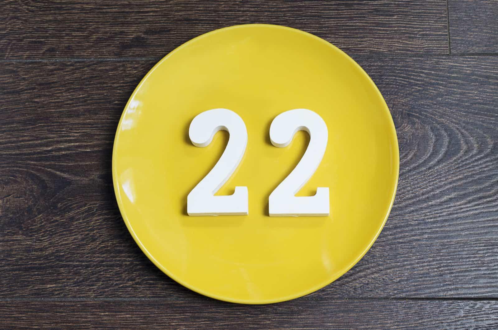 Lebenszahl 22
